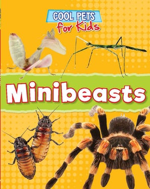 Cool Pets: Minibeasts